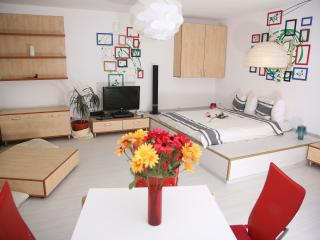 STUDIO T - CENTRAL - COMFY - WiFi -GREAT LOCATION! - Bucharest vacation rentals