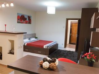 STUDIO D - CENTRAL - COMFY - WiFi - FREE PARKING! - Bucharest vacation rentals