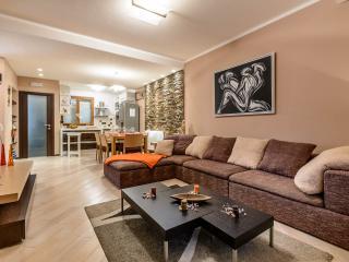 Luxury apartment M - Zaton vacation rentals