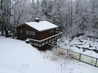 Dramatic Cottage Literally Over a Waterfall - Montgomery vacation rentals
