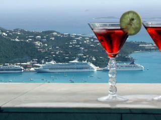 The Epitome of Caribbean Luxury w/ FREE NIGHT - Saint Thomas vacation rentals