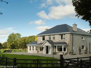 Perfect 5 bedroom House in Killarney - Killarney vacation rentals