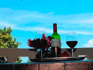 Kastytis Kourt - Ocean view apartment - Cachi vacation rentals