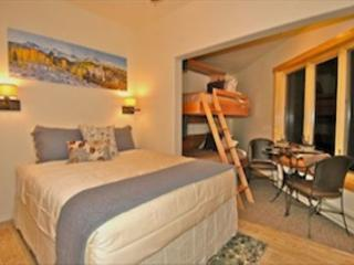 Viking Lodge 100B - Cozy Studio Condo at the base of lift 7 in Telluride - Telluride vacation rentals
