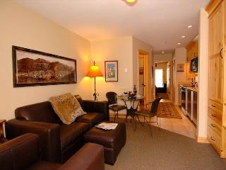 Viking Lodge #212 - pool/hot tub/parking/king bed/steps to skiing/big views! - Telluride vacation rentals