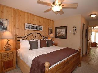 Viking Lodge 311 - Most Sought After Rental Condo At The Viking Lodge! - Telluride vacation rentals