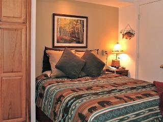 Viking Lodge 315 - In town on river/ views/ location/ pool/ hot-tub/ parking! - Telluride vacation rentals