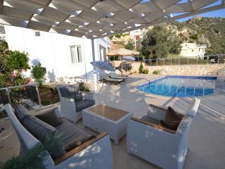 Leo - Kalkan vacation rentals