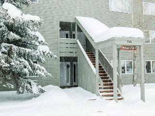 Cozy One Bedroom in Jackson Hole. Seasonal or Vacation rentals available! - Wilson vacation rentals