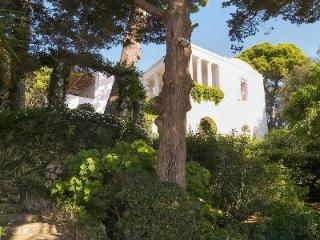 Enchanting Villa Tiberio boasts Pool, Exquisite Garden & Stunning Gulf Views - Capri vacation rentals