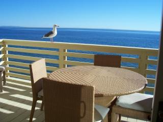 Malibu Paradise - Malibu vacation rentals