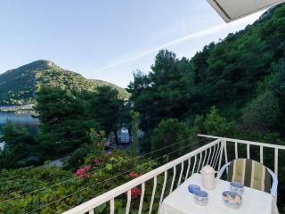 Guest House Marija - Studio with Balcony and Sea View - Mljet vacation rentals
