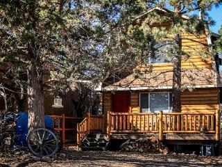 Gracie's Cabin #1518 - Sugarloaf vacation rentals