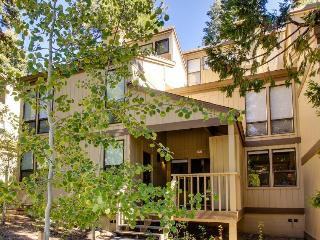 Streamside Townhome - Kings Beach vacation rentals