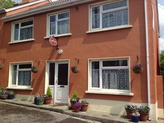 Perfect 4 bedroom Dingle Townhouse with Internet Access - Dingle vacation rentals