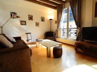 Place des Vosges - Paris vacation rentals