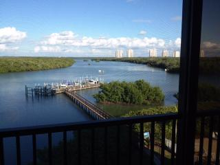 Gulf of Mexico - Bonita Beach - Inter-coastal - Bonita Springs vacation rentals