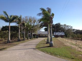 Watters Estate - Lake Placid vacation rentals