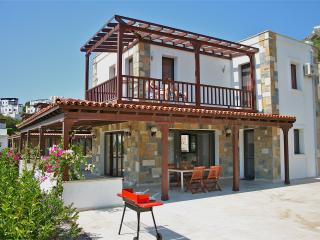 Luxe villa met privé zwembad in Gundogan (Bodrum) - Gundogan vacation rentals