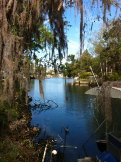 The Bird House of Crystal River, Florida - Crystal River vacation rentals