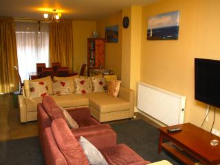 Dublin Centre Home from Home Apt C - County Dublin vacation rentals