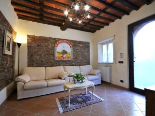 Casa Anthea of 138  sq.  900 metres from the city - Lucca vacation rentals
