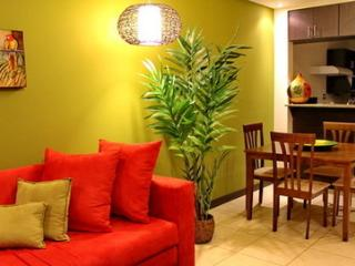 Cariari Lapa Premium Vacation Condo - San Jose vacation rentals