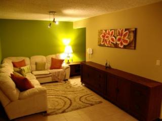 Cedro Premium Vacation Condo - San Jose vacation rentals