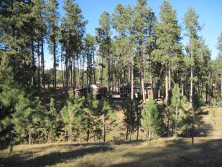Lazy Pines Cabin - Hill City vacation rentals