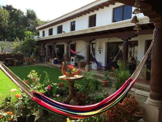 APT5 Brand new luxurious apartments with garden - Guatemala vacation rentals