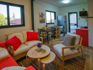 green nest. a great home away. charming apartment - Ramat Hasharon vacation rentals