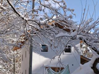 Countryside Escape - Skiing and Outdoor Sports - Takayama-mura vacation rentals