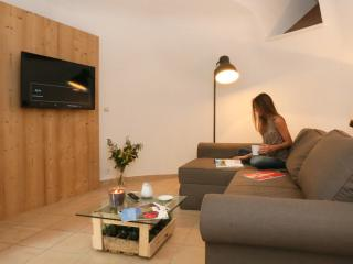 2 bedroom Gite with Television in Beausemblant - Beausemblant vacation rentals