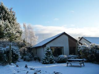 Lovely Aviemore vacation Bungalow with Tennis Court - Aviemore vacation rentals