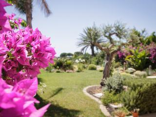 Cozy 3 bedroom B&B in Nubia - Nubia vacation rentals