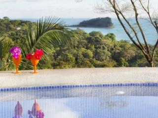 Top Rated Stunning Luxury Villa w Staff and Chef - Manuel Antonio National Park vacation rentals