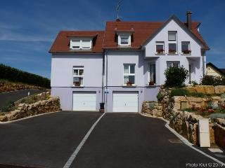 Gorgeous Apartment with Central Heating and Freezer in Eguisheim - Eguisheim vacation rentals