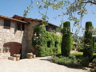 5 bedroom Villa with Television in San Martino in Freddana - San Martino in Freddana vacation rentals