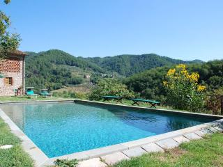 Spacious Villa with Internet Access and Television - San Martino in Freddana vacation rentals