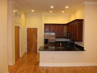 downtown Jersey City 1300Sq 10min to Manhattan NYC - Jersey City vacation rentals