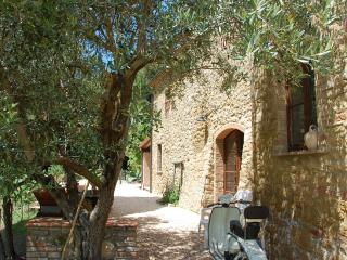 Nice Farmhouse Barn with Grill and Parking Space - San Dalmazio vacation rentals