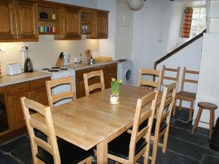 Beautiful Cottage with Dishwasher and Fireplace - Abergynolwyn vacation rentals