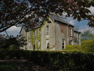 The Old Monastery ,Cahersiveen ,Co. Kerry - Cahersiveen vacation rentals