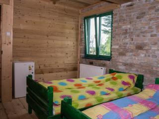 Red room with two beds and shared bathroom - Sremski Karlovci vacation rentals