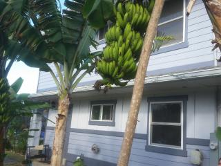 Banana Bungalow 2 Bed Apt/ Sleeps 6 /Laie Hawaii - Laie vacation rentals