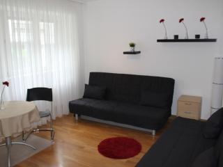 Cozy 2 room flat, Frankfurt, close by Center/Messe - Frankfurt vacation rentals