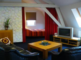 Nice Condo with Internet Access and Satellite Or Cable TV - Neerpelt vacation rentals
