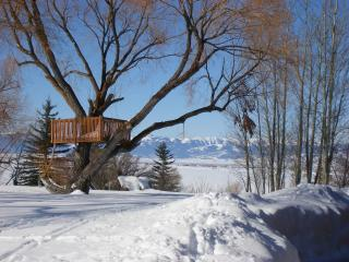 Cabin in the Tetons - Swanton vacation rentals