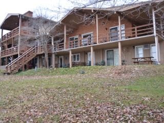Hickory Point - Moneta vacation rentals