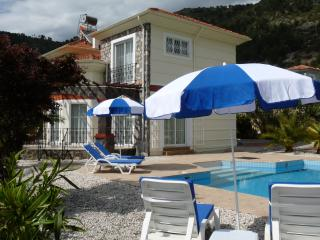 Beautiful 3 bedroom Vacation Rental in Yesiluzumlu - Yesiluzumlu vacation rentals